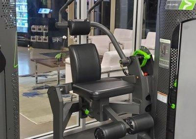Prime Trunk Flexion machine